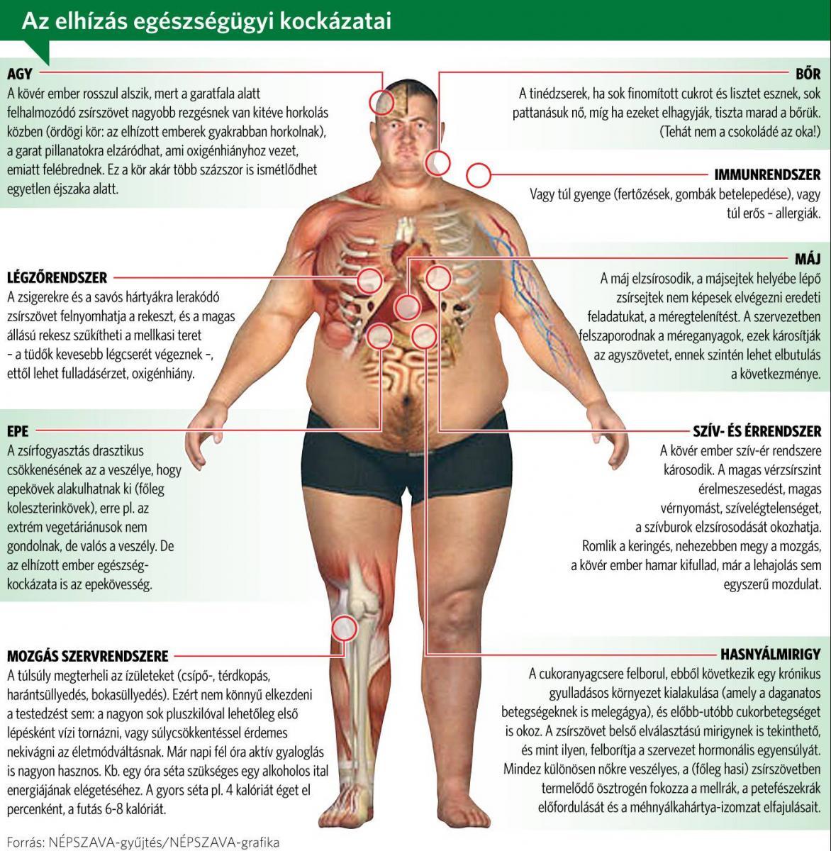elveszíti a mellkas kövér nő