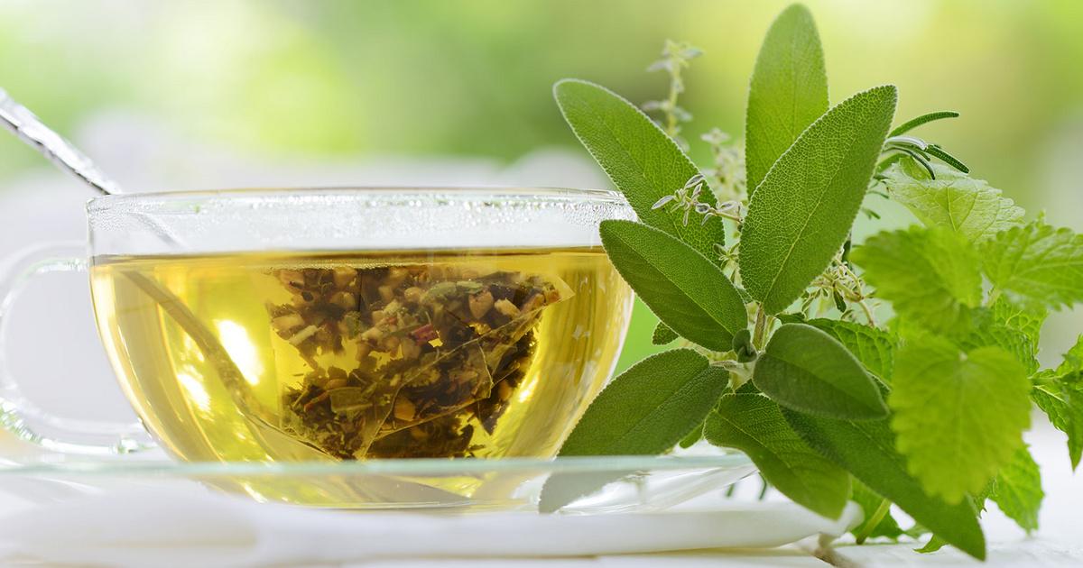 milyen típusú tea segíti a zsírégetést