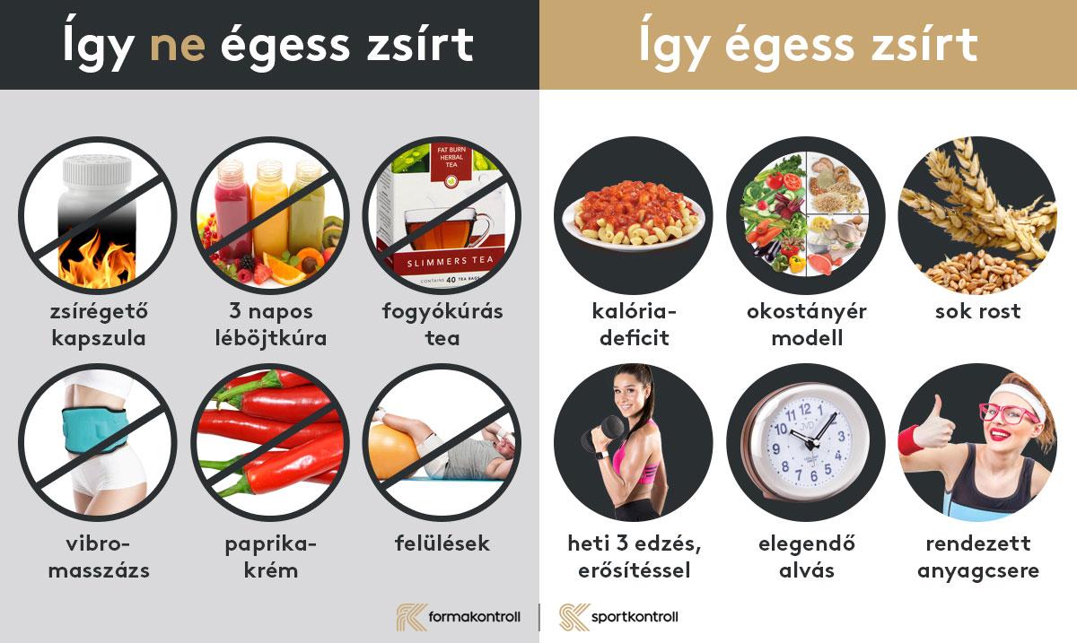 zsírégető hatása a testre