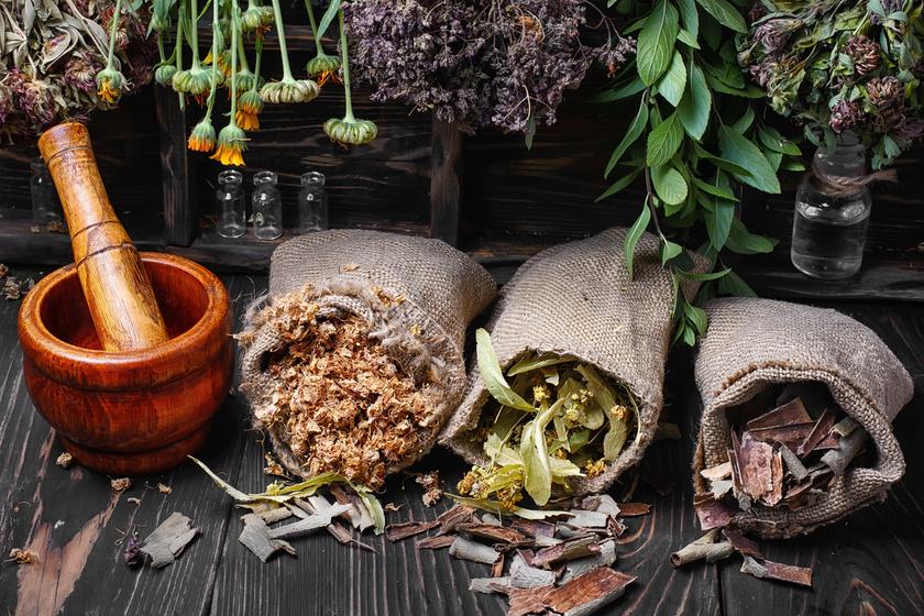természetes gyógynövények a zsírégetés elősegítésére