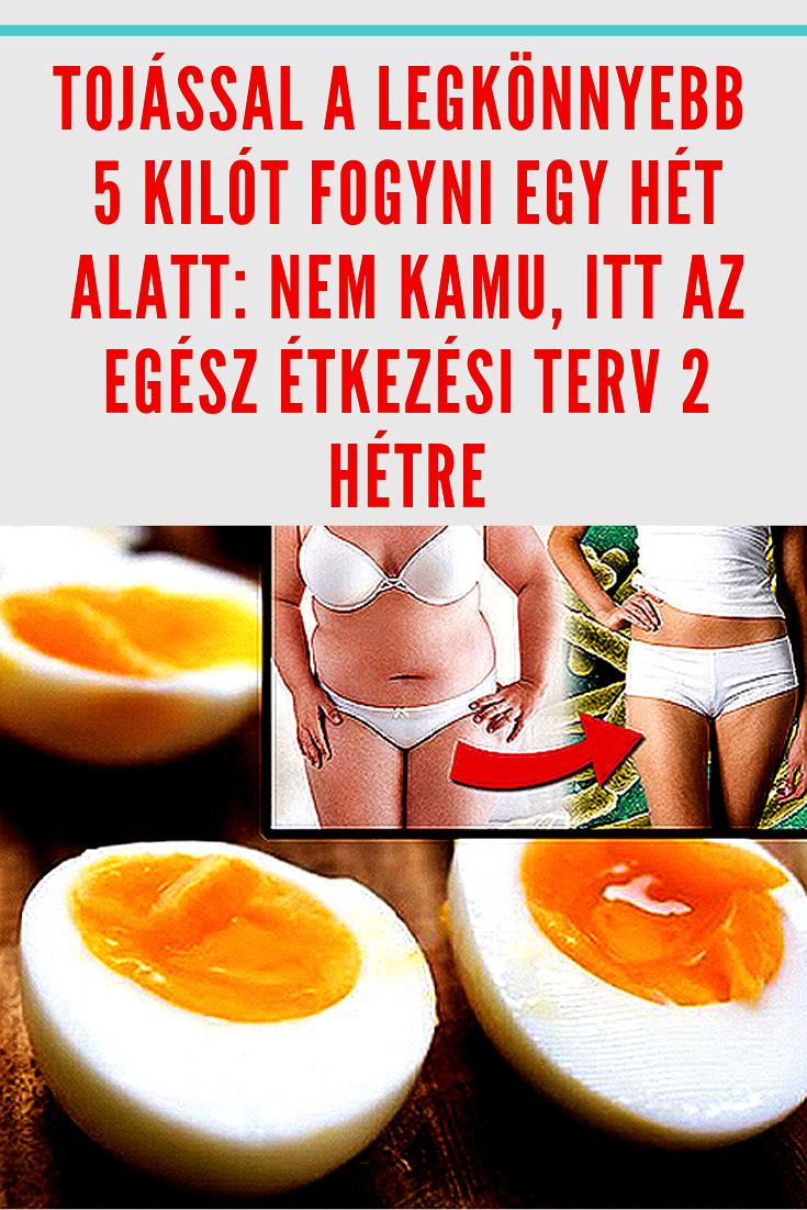 Grazing-diéta: így fogyj 2 hét alatt 5 kilót - mintaétrenddel! | fabianpack.hu