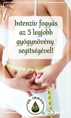 fogyás gyógynövényekkel)