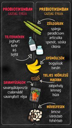 jó baktériumok a zsírvesztéshez