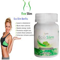 Eco slim diet. Blog egy kövér nő a diéta