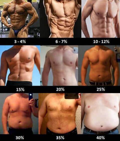 hogyan lehet elveszíteni a felesleges testzsírt