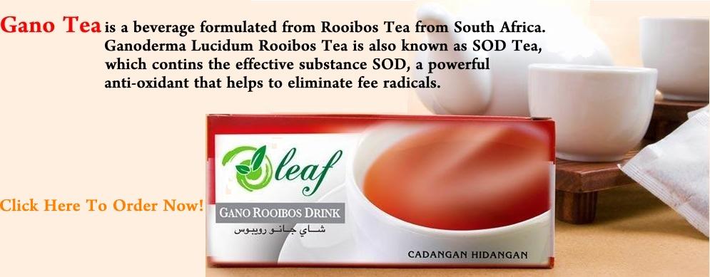 rooibos tea fogyás dr oz