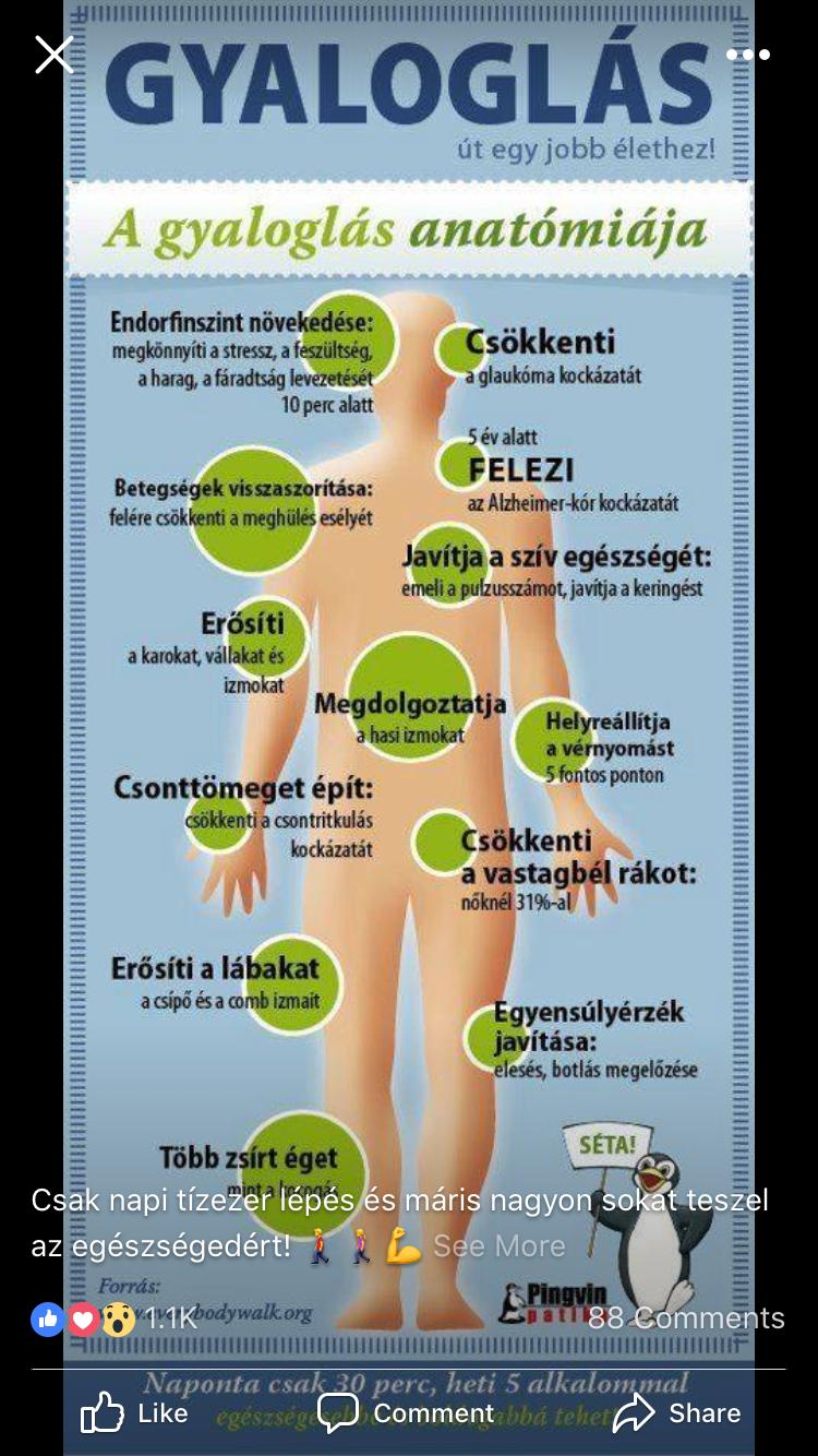 segít-e a tirozin a fogyásban