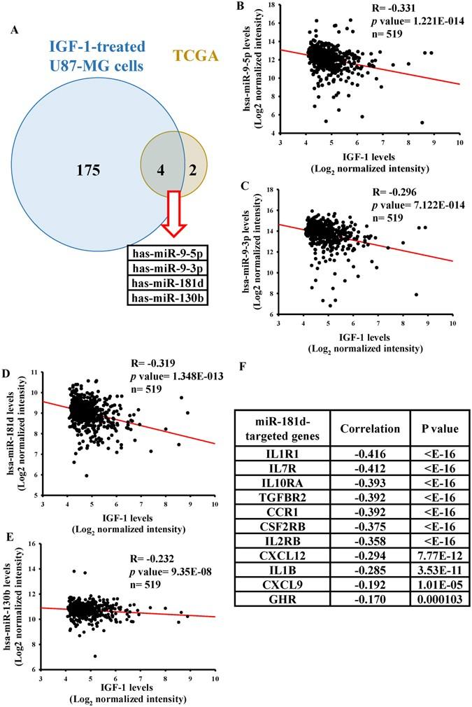 Igf- lr3 a zsírégetésért - Mi a növekedési hormon?