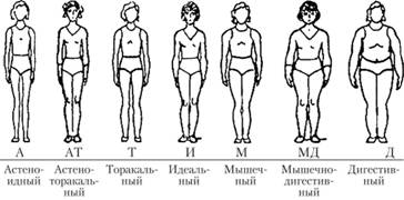 endomorf testtípus fogyni)