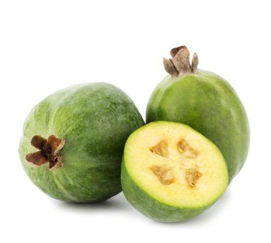 Guava levelek fogyás. Teljes karidos ketogén étrend pdf