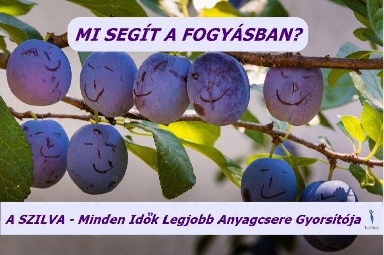 java szilva fogyás)