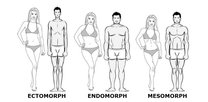 Endomorph fogyás diéta. Krónikus eróziós hatás gastrit diétánként