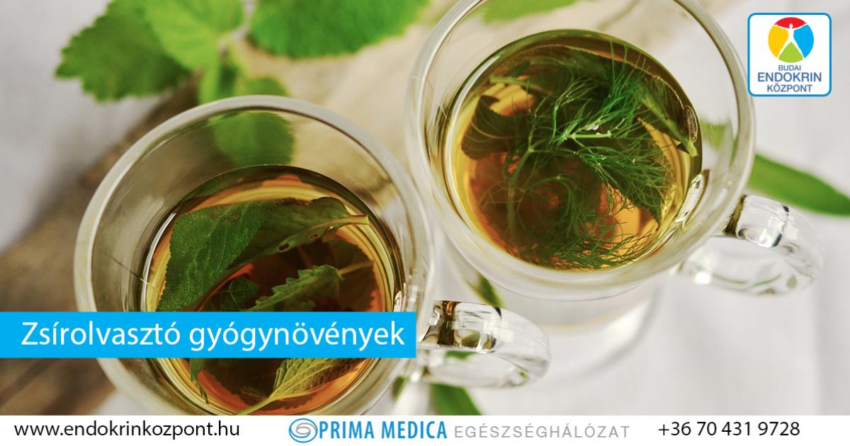 minden természetes gyógynövény fogyókúrás tea