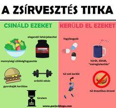 női zsírvesztési terv)