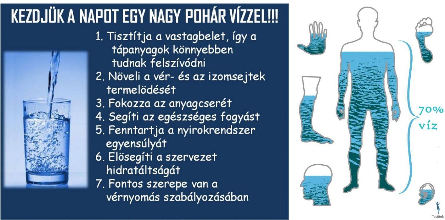 sikeres fogyás tisztít)