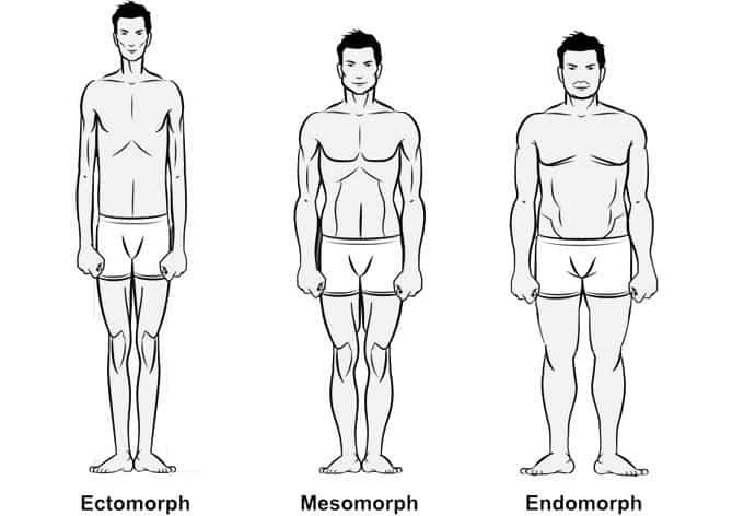 súlyvesztés a mezo-endomorf esetében)